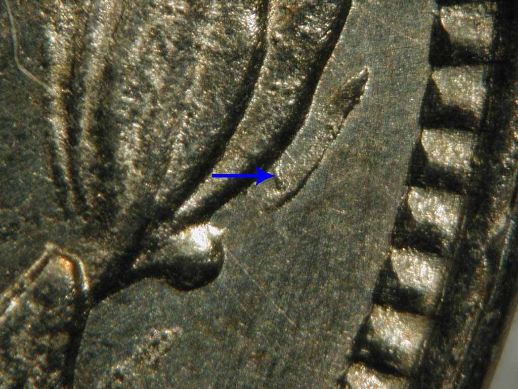 bar-leaf